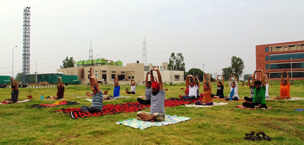 3rd International Yoga Day